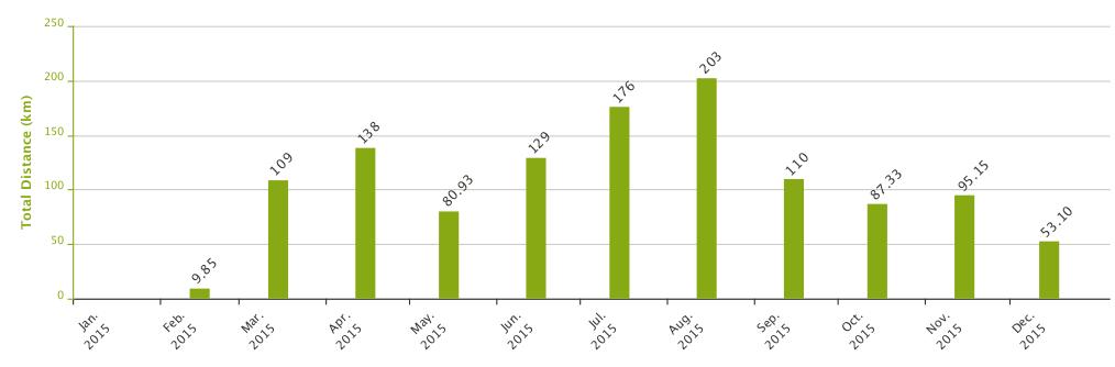 2015 metų amerikietiški kalneliai