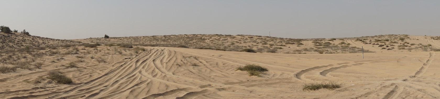 al_qudra_desert