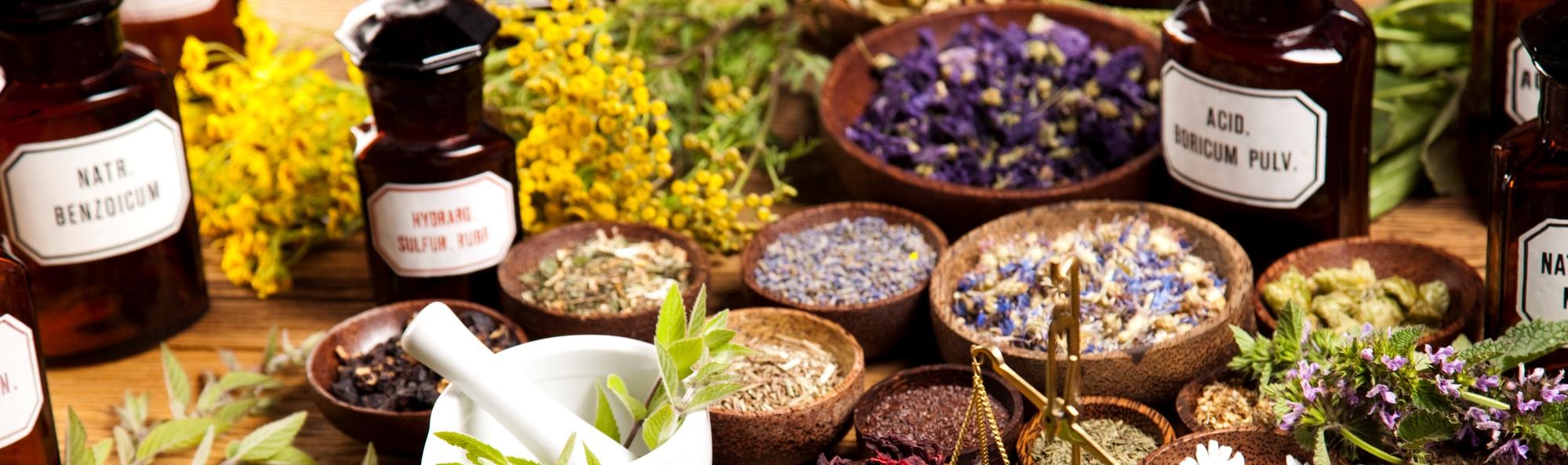 Naturopathic Doctor | Herbalist | Holistc Health | New York City