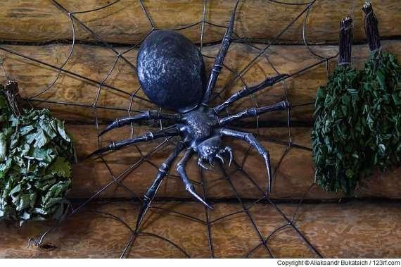 Spinnen in der Sauna? Nein, danke!