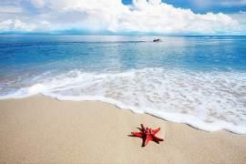 Sanftes Meeresrauschen - Naturgeräusche haben eine unheimlich beruhigende Wirkung