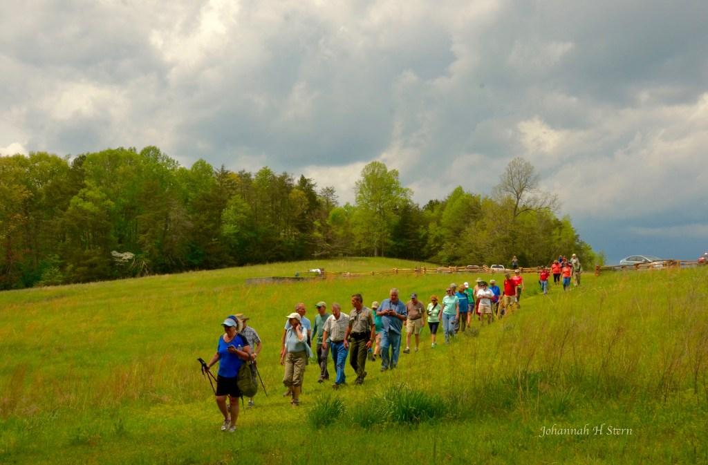Trail Hike. Photo by Johanna H. Stern.