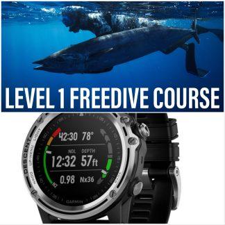 Dive Into Deals