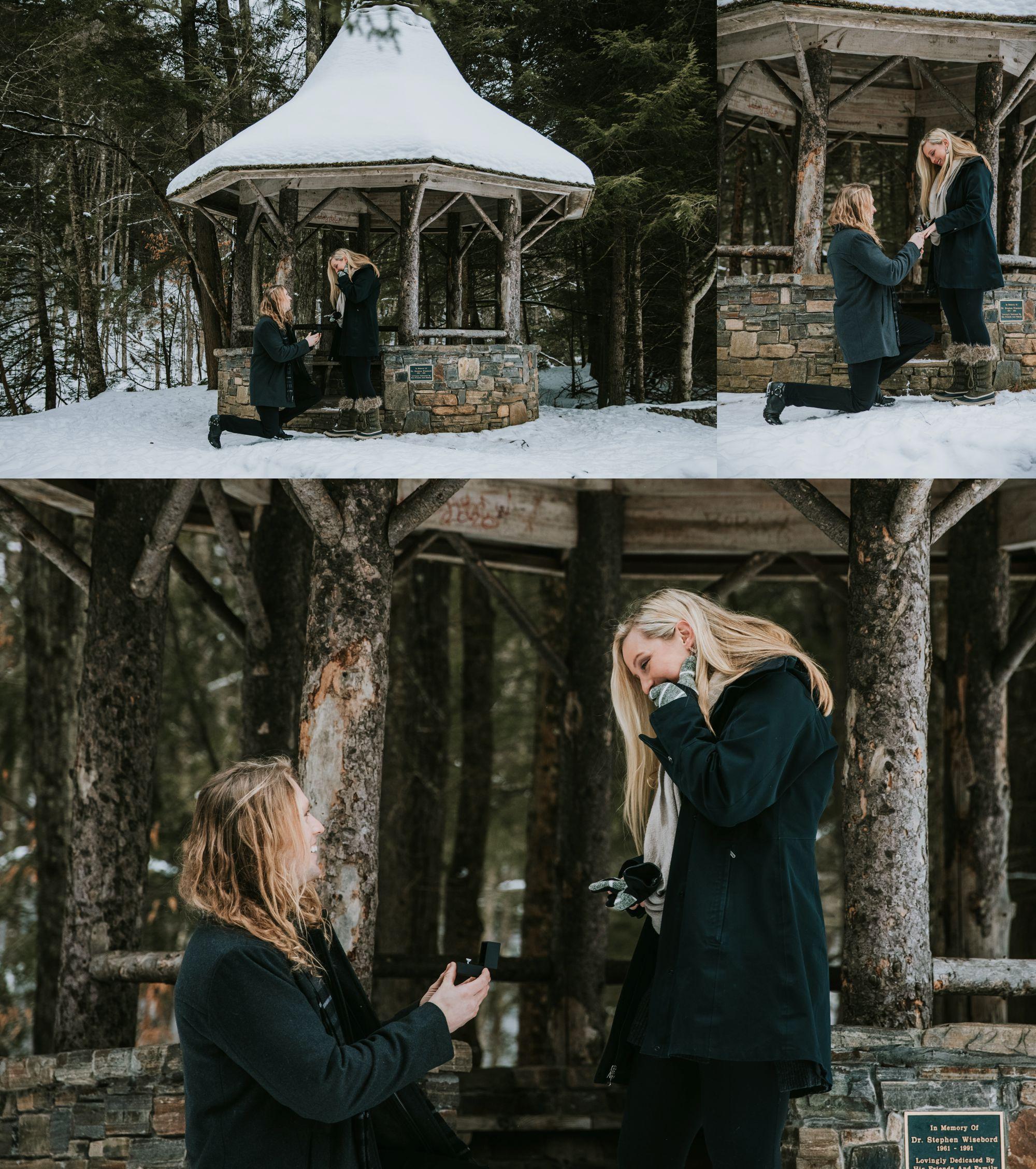 Sleigh Ride Surprise Engagement