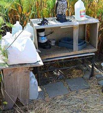 tradional feeding station