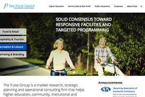 The Pulse Group professional services website redesign by Saveda Web Strategies