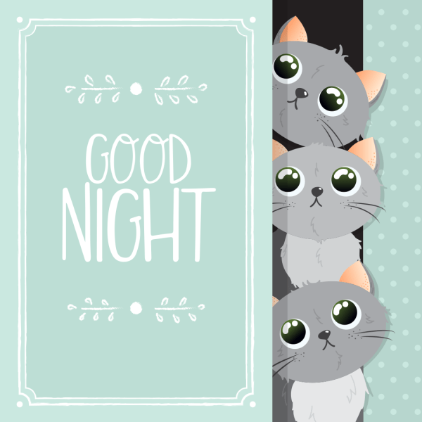 Good Night Three Little Kittens Gonna Sleep Now