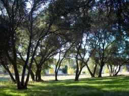 Sierra Gateway Apartments - Before