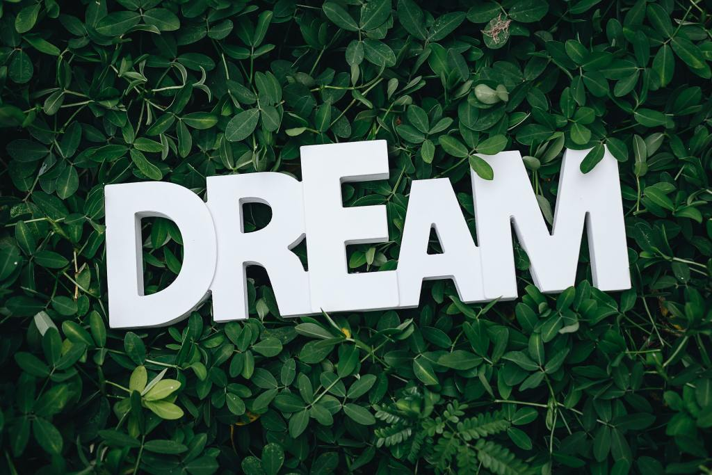 "word ""dream"" on grass - baby boomers financial goals"