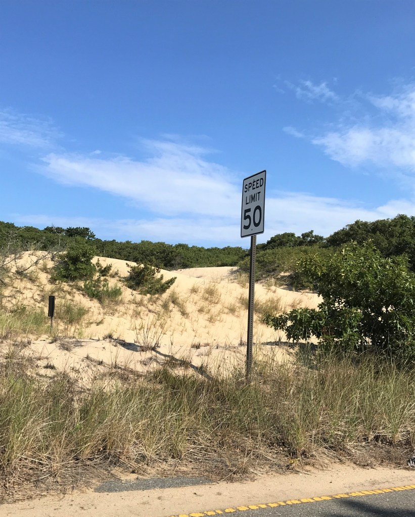 sand dunes around Provincetown