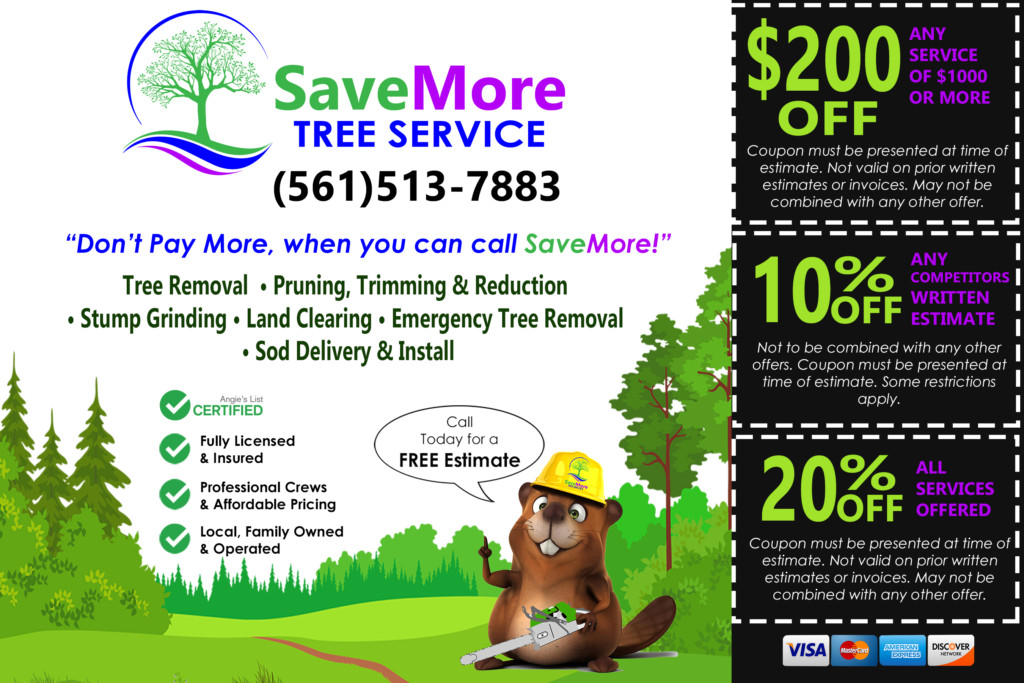 Print Material Flyers And Mailers Savemore Tree Service