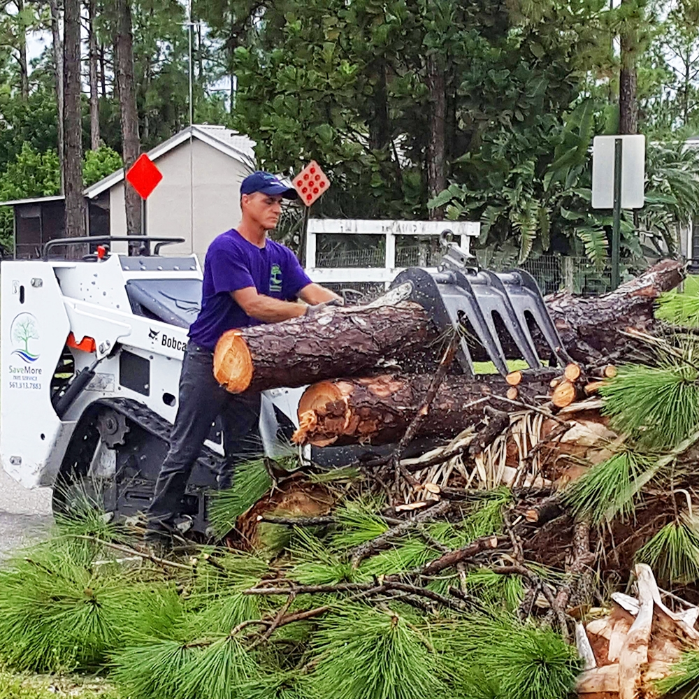 Land Clearing and Lot Clearing Loxahatchee, Land Clearing West Palm Beach, Land Clearing Royal Palm Beach, Land Clearing wellington