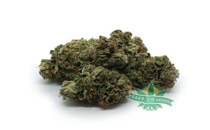 GG Bulk Buy weed online canada