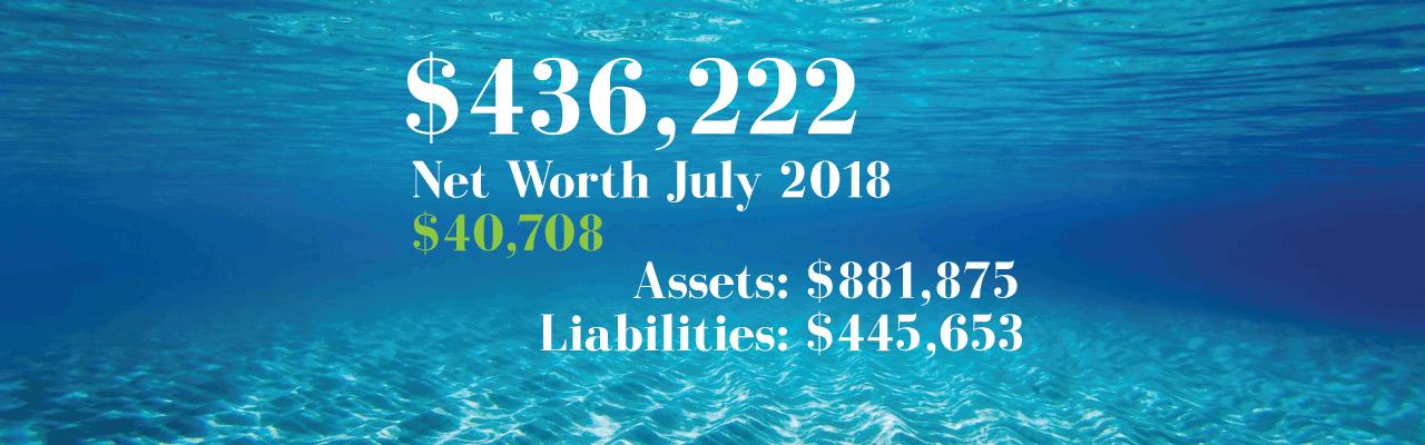 Net Worth: 2018-07-01