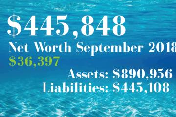 Net Worth: 2018-01