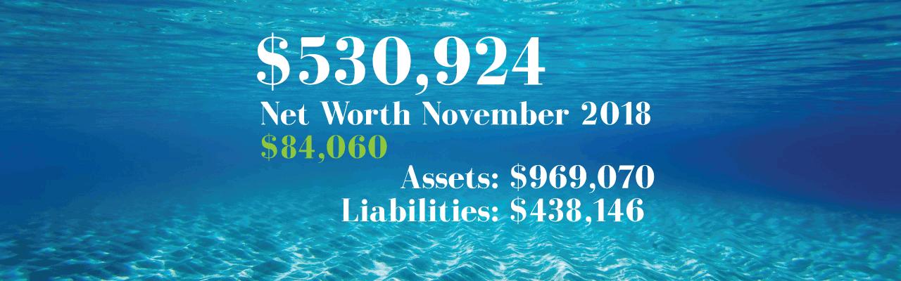 Net Worth: 2018-11-01
