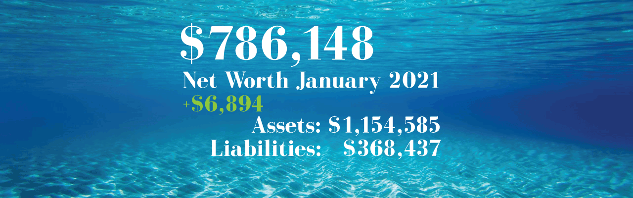Net Worth: 2021.01