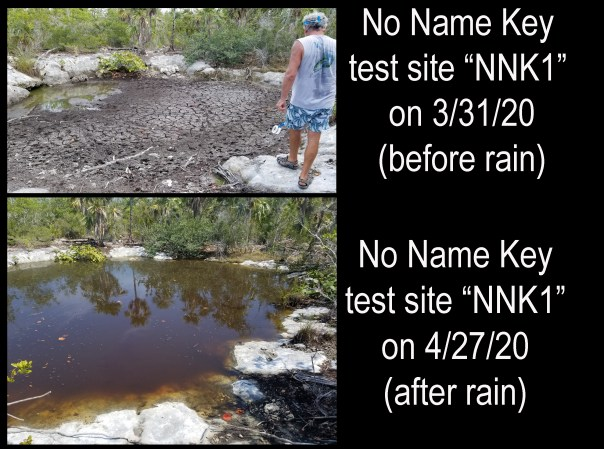 NNK before and after