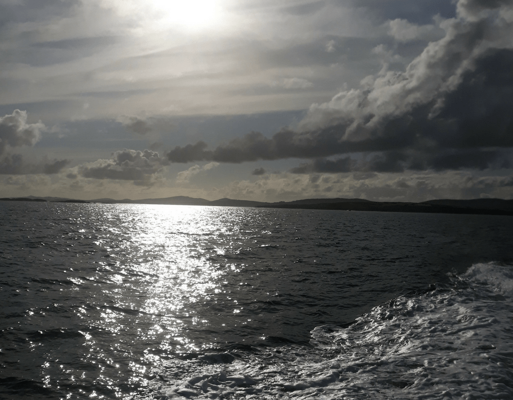 Sea Change Project – Marine Pollution and Human Health