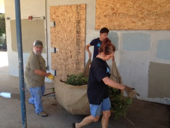 06-pvs-cleanup-aug-13-2016