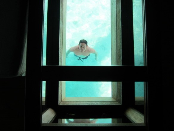 Swimming underneath the glass bottom table in our room