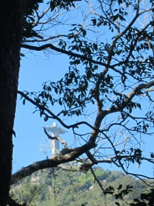 View of Cristo Redentor from Paineiras