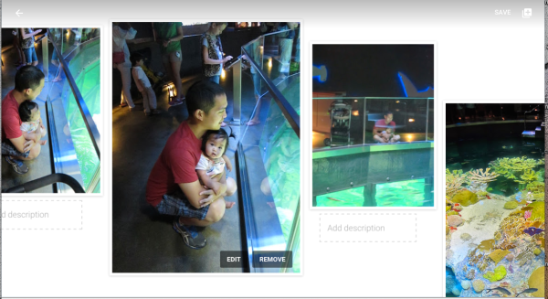 A story Google created out of trip to the aquarium