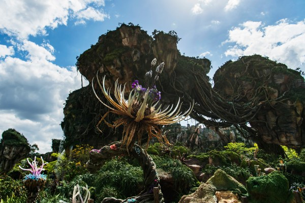 Will Pandora World of Avatar wow you even if you have no emotional connection to the film? Let's explore why Pandora is totally worth a visit.