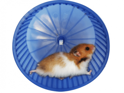 The Hamster wheel of Manufactured Spend
