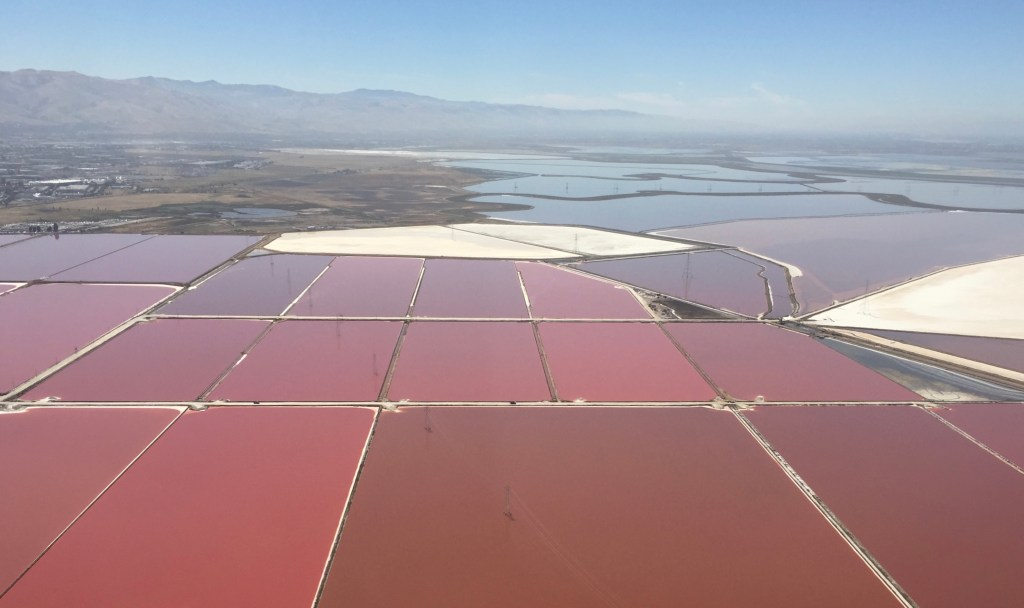Sections of red-tinted salt pond water from above