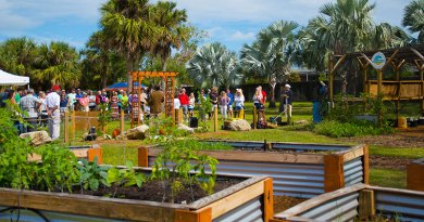 July Brown Bag Lunch: The City of Satellite Beach and its Sustainability Action Plan