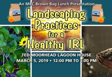 Mar. 5 Brown Bag Lunch: Landscaping Practices for a Healthy IRL