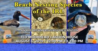 August 6 Brown Bag Lunch: Beach Nesting Species of the IRL