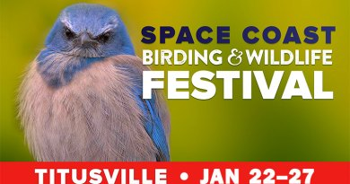23rd Annual Space Coast Birding and Wildlife Festival