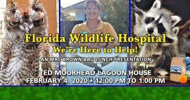 February Brown Bag Lunch Florida Wildlife Hospital