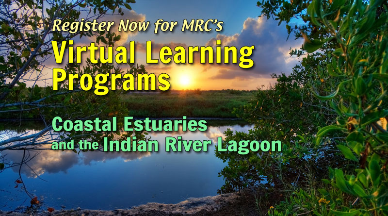 MRC is now offering FREE classroom lessons