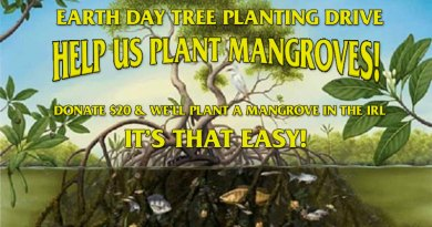 Earth Day Tree Planting Drive
