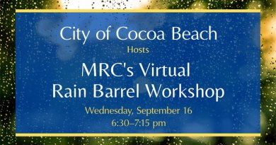 Virtual Rain Barrel Workshop