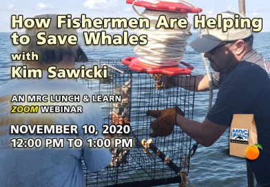 Fishermen Helping to Save Whales