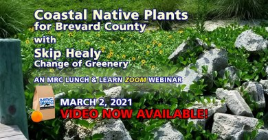 Coastal Native Plants Webinar