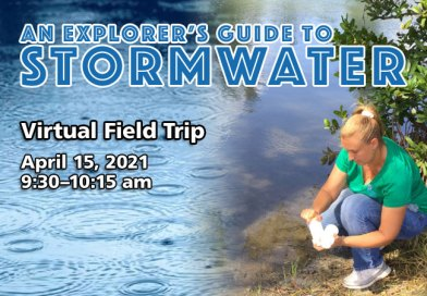 Virtual Field Trip - An Explorer's Guide to Stormwater