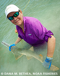 Join us for our May Lunch & Learn Webinar on the endangered sawfish!