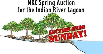 MRC Spring Auction