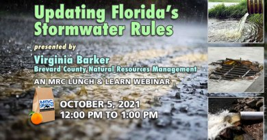 October Lunch and Learn Webinar: Updating Florida's Stormwater Rules