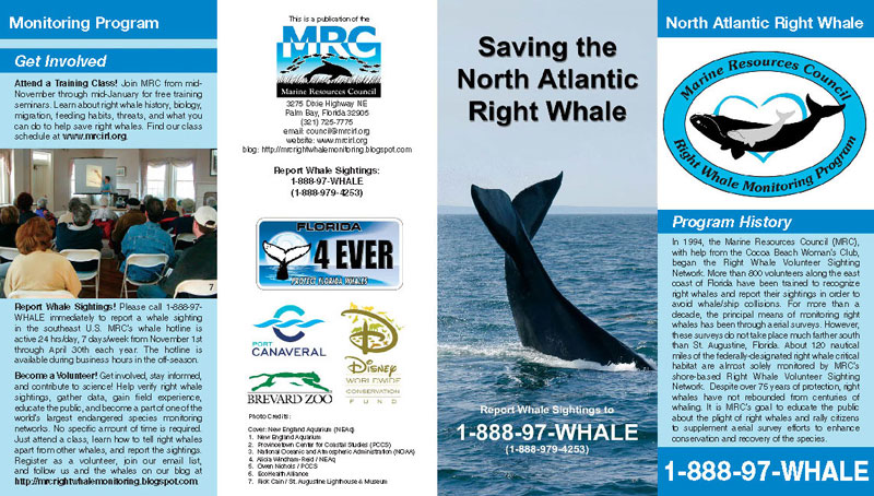 Saving the North Atlantic Right Whale Brochure