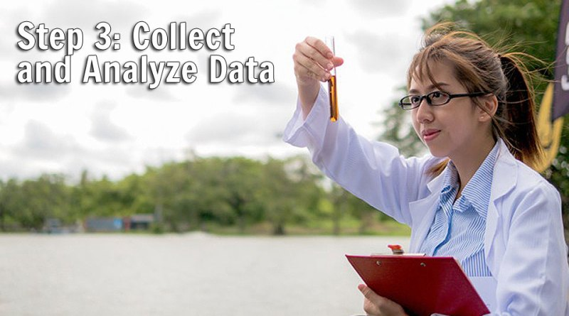 Step 3: Collect and Analyze Data