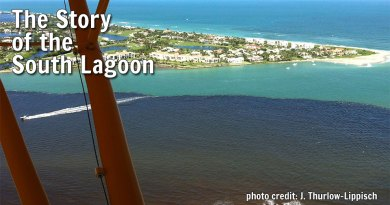 The Story of the South Lagoon
