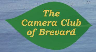 The Camera Club of Brevard