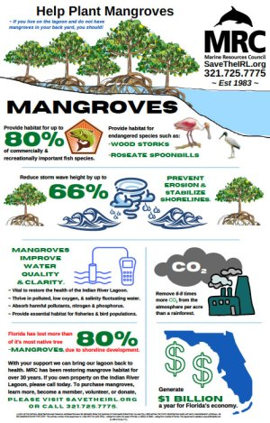 Help Plant Mangroves Poster