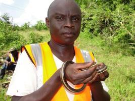Patrick Kinyatta Malonza Holding Psammophis orientalis_Kwale Kenya